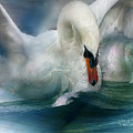 Spirit Of The Swan by Carol Cavalaris