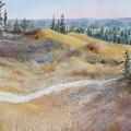 Spirit Sands by Ruth Kamenev