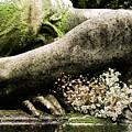 Spirit Whisper Of Sympathy by Char Szabo-Perricelli