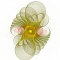 Spiro-girations by Richard Ortolano