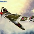 Spitfire by Marc Stewart