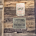 Spitting Prohibited by Gale Miko