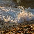 Splash by Alicia Heaney