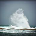 Splash by Douglas Barnard