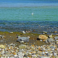 Splash In The Blue Sea  by Lynda Lehmann