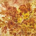 Splash Of Autumn Color by Lois Mountz