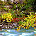 Splash Of Color Along The Creek by Bill Keiran