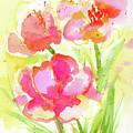 Splash Of Pinks  by Nada Meeks
