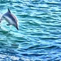 Splashing Dolphin by David Millenheft