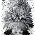 Splat Cat by Baron Dixon