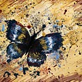 Splatter Butterfly by Jolie Shave