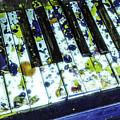Splattered Keys by Jim Love