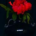 Splendid Peony In Vase. by Alexander Vinogradov