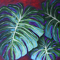 Split Leaf Philodendron by Phyllis Howard