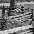 Split Rail Fence by Eric Liller