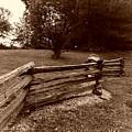 Split Rail Fence by John Myers