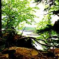 Split Rock State Park by Jody Scott Olson