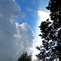 Split Sky by Jessica Tolemy
