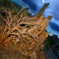 Spooky Mono Lake Night by Blake Richards