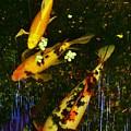 Spoor Fish Water Flowers 2 by Phyllis Spoor