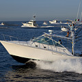 Sportfishing Boats - Cabo San Lucas by Anthony Totah