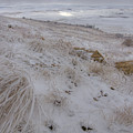 Spot Of Sun by Idaho Scenic Images Linda Lantzy