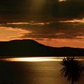 Spotlight Bay by Aidan Moran