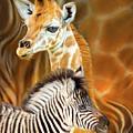 Spots And Stripes - Giraffe And Zebra by Carol Cavalaris