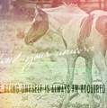Spotted Pony Quote by JAMART Photography