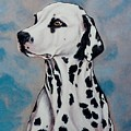 Spotty by Lilly King