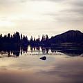 Sprague Lake At Sunset by Sue Collura