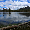 Sprague Lake Cloud Reflection by Christiane Schulze Art And Photography