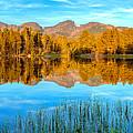Sprague Lake Sunrise Panorama by John Vose