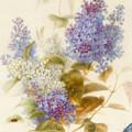 Spray Of Lilac by Pauline Gerardin
