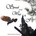 Spread Your Wings by Patti Whitten
