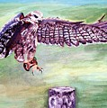 Spread Your Wings by Robin Monroe