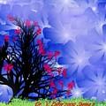 Spring 2 by Dr Loifer Vladimir