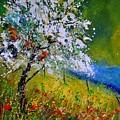 Spring 451110 by Pol Ledent