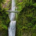Spring At Multnomah Falls by Dale Kauzlaric