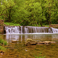 Spring At Valley Creek by Rima Biswas