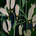 Spring Ballet by Nancy Kane Chapman