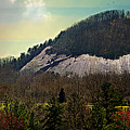 Spring Begins At Glassy Mountain by Kathy Barney