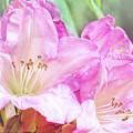 Spring Bling by Jean OKeeffe Macro Abundance Art