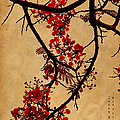 Spring Bloosom In Maldives. Flamboyant Tree I.  Japanese Style by Jenny Rainbow