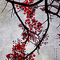 Spring Bloosom In Maldives. Flamboyant Tree II. Japanese Style by Jenny Rainbow