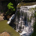 Spring Color At Burgess Lower Falls by Bob Phillips
