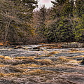 Spring Eau Claire Dells Park Panoramic by Dale Kauzlaric