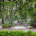 Spring Floodwaters. Altai by Victor Kovchin