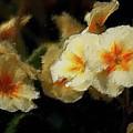 Spring Floral by David Lane