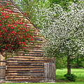 Spring Flowers And The Barn by Nancy De Flon